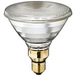 Par 38 Light Bulbs